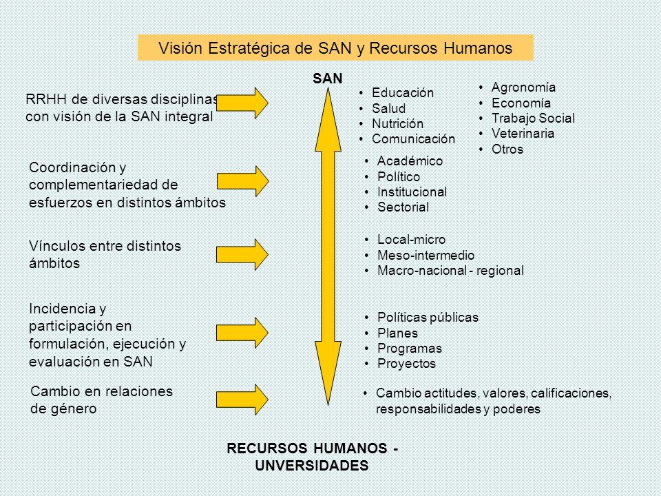 Visión Estratégica de SAN y Recursos Humanos Local-micro Meso-intermedio Macro-nacional - regional Educación Salud Nutrición Comunicación RRHH de dive