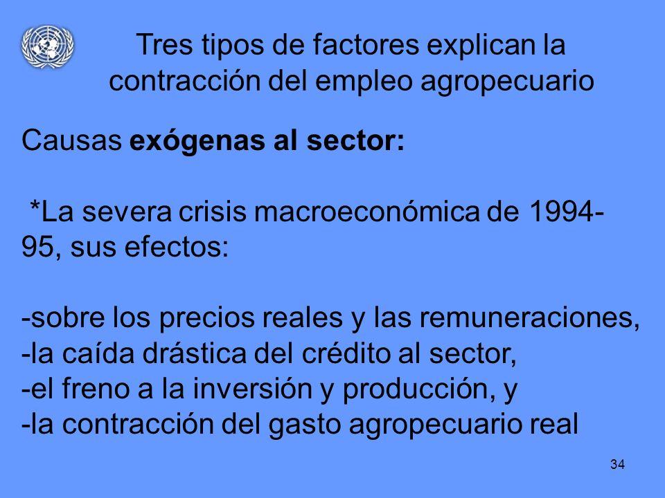 34 Causas exógenas al sector: *La severa crisis macroeconómica de 1994- 95, sus efectos: -sobre los precios reales y las remuneraciones, -la caída drá