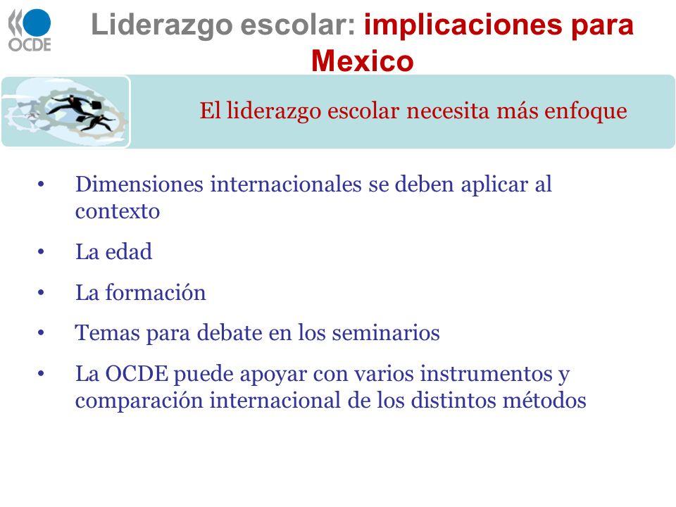 Dimensiones internacionales se deben aplicar al contexto La edad La formación Temas para debate en los seminarios La OCDE puede apoyar con varios inst
