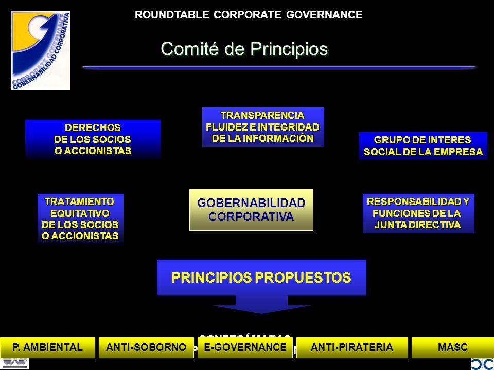 ROUNDTABLE CORPORATE GOVERNANCE CONFECÁMARAS 02/04/2002 CORPORATE GOVERNANCE PROJECT Comité de Principios GOBERNABILIDAD CORPORATIVA DERECHOS DE LOS SOCIOS O ACCIONISTAS TRATAMIENTOEQUITATIVO DE LOS SOCIOS O ACCIONISTAS TRANSPARENCIA FLUIDEZ E INTEGRIDAD DE LA INFORMACIÓN GRUPO DE INTERES SOCIAL DE LA EMPRESA RESPONSABILIDAD Y FUNCIONES DE LA JUNTA DIRECTIVA PRINCIPIOS PROPUESTOS MASCE-GOVERNANCEANTI-PIRATERIAP.