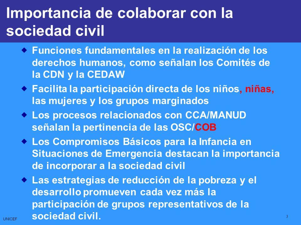 UNICEF 3 CCCs: Core Commitments for Children Funciones fundamentales en la realización de los derechos humanos, como señalan los Comités de la CDN y l