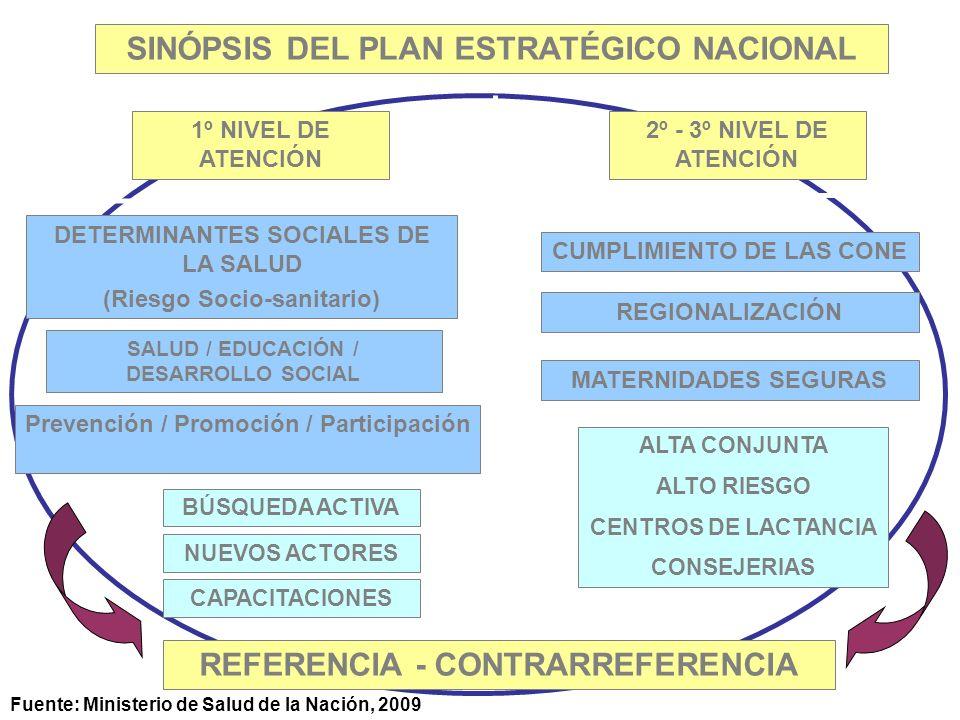 SINÓPSIS DEL PLAN ESTRATÉGICO NACIONAL 1º NIVEL DE ATENCIÓN 2º - 3º NIVEL DE ATENCIÓN DETERMINANTES SOCIALES DE LA SALUD (Riesgo Socio-sanitario) Prevención / Promoción / Participación SALUD / EDUCACIÓN / DESARROLLO SOCIAL BÚSQUEDA ACTIVA NUEVOS ACTORES CAPACITACIONES CUMPLIMIENTO DE LAS CONE REGIONALIZACIÓN MATERNIDADES SEGURAS ALTA CONJUNTA ALTO RIESGO CENTROS DE LACTANCIA CONSEJERIAS REFERENCIA - CONTRARREFERENCIA Fuente: Ministerio de Salud de la Nación, 2009