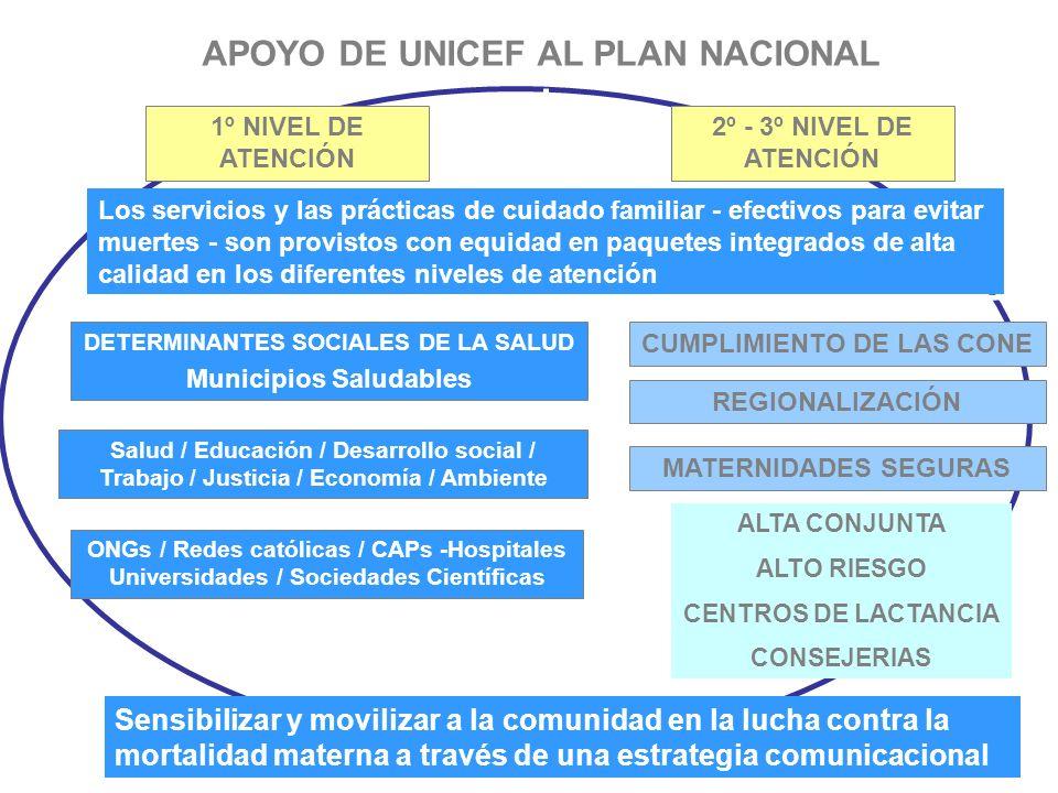 APOYO DE UNICEF AL PLAN NACIONAL 1º NIVEL DE ATENCIÓN 2º - 3º NIVEL DE ATENCIÓN DETERMINANTES SOCIALES DE LA SALUD Municipios Saludables ONGs / Redes