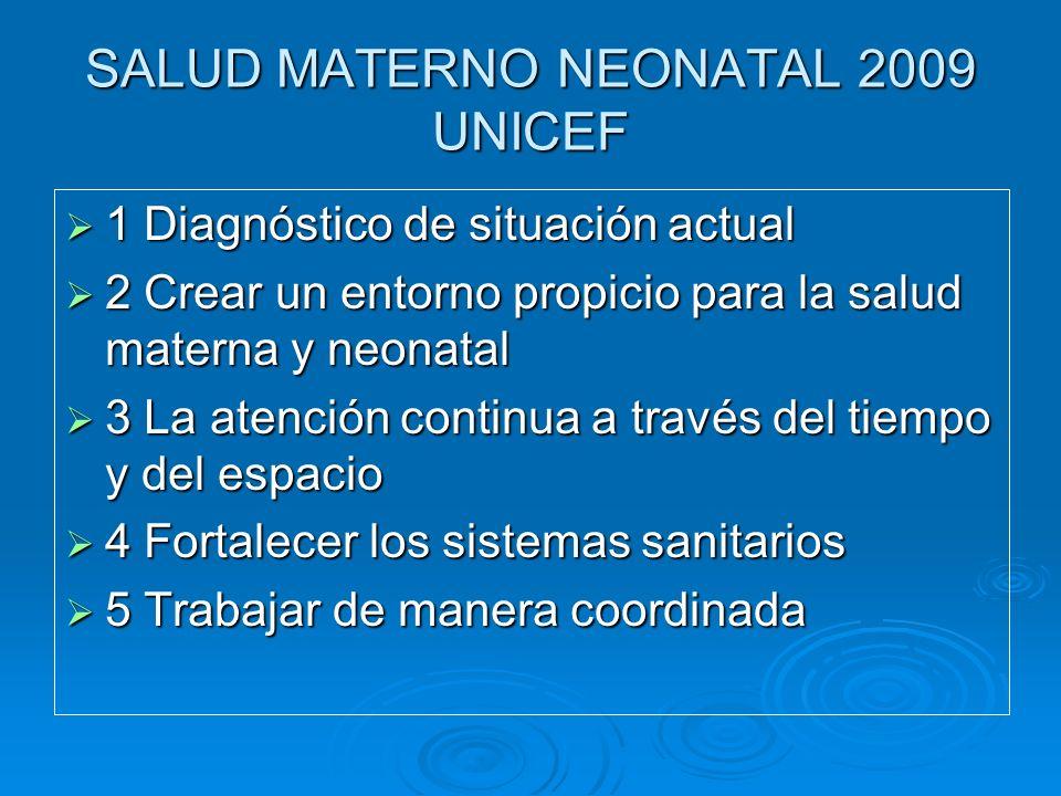 SALUD MATERNO NEONATAL 2009 UNICEF 1 Diagnóstico de situación actual 1 Diagnóstico de situación actual 2 Crear un entorno propicio para la salud mater
