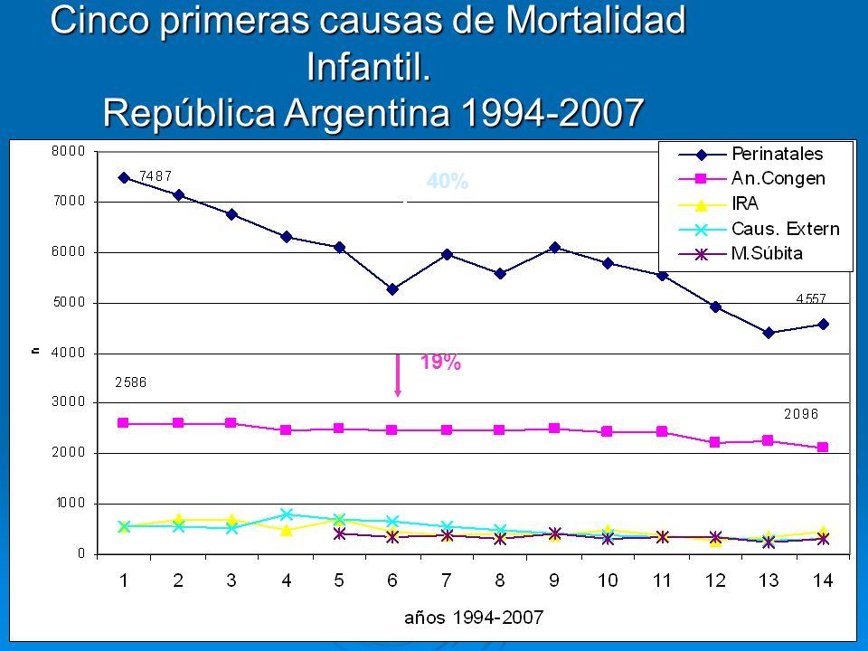 Cinco primeras causas de Mortalidad Infantil. República Argentina 1994-2007 26% 34% 14% 40% 19%