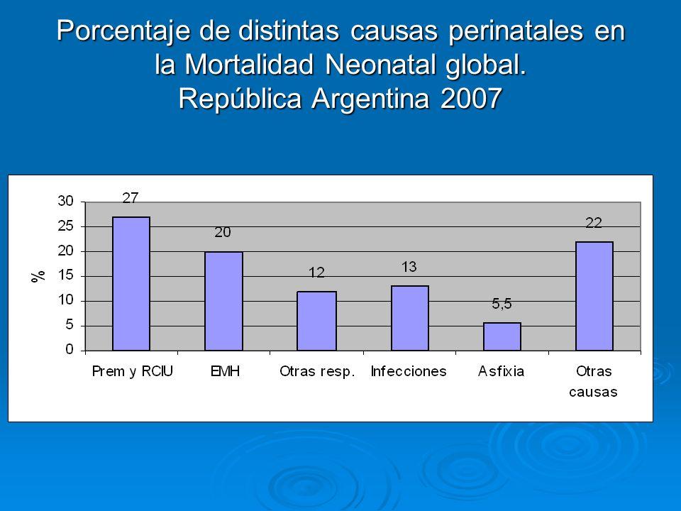Porcentaje de distintas causas perinatales en la Mortalidad Neonatal global. República Argentina 2007