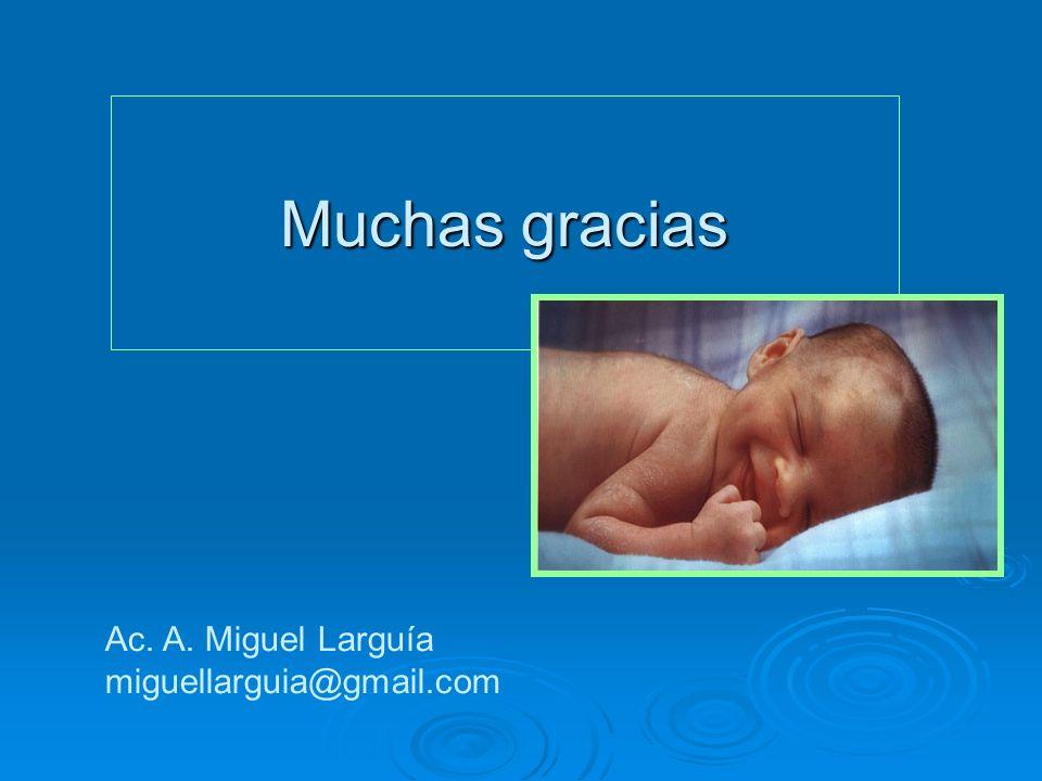 Muchas gracias Ac. A. Miguel Larguía miguellarguia@gmail.com