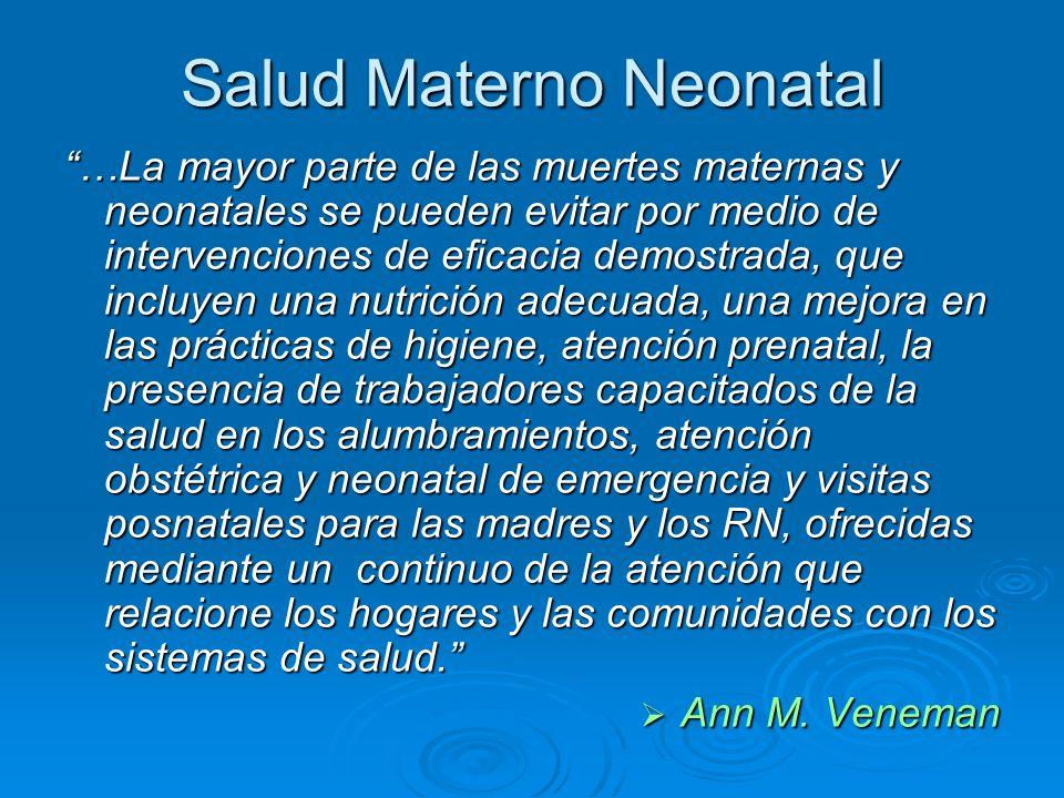 Salud Materno Neonatal …La mayor parte de las muertes maternas y neonatales se pueden evitar por medio de intervenciones de eficacia demostrada, que i