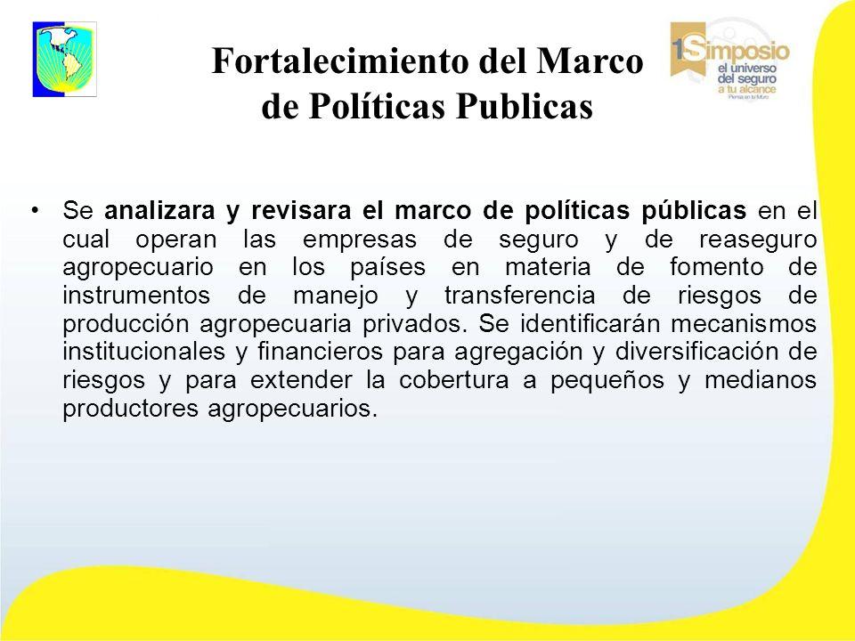 Fortalecimiento del Marco de Políticas Publicas Se analizara y revisara el marco de políticas públicas en el cual operan las empresas de seguro y de reaseguro agropecuario en los países en materia de fomento de instrumentos de manejo y transferencia de riesgos de producción agropecuaria privados.