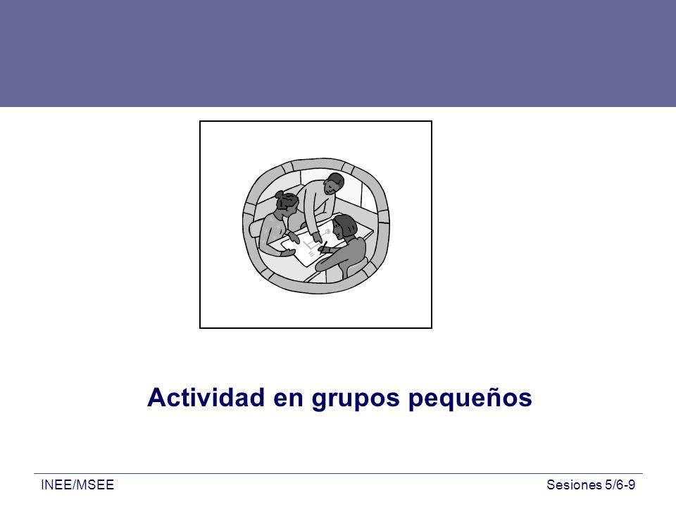 INEE/MSEESesiones 5/6-9 Actividad en grupos pequeños