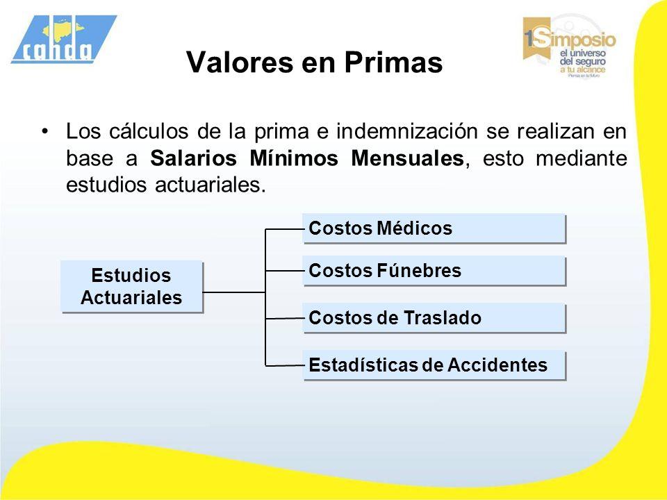 Valores en Primas Los cálculos de la prima e indemnización se realizan en base a Salarios Mínimos Mensuales, esto mediante estudios actuariales. Estud