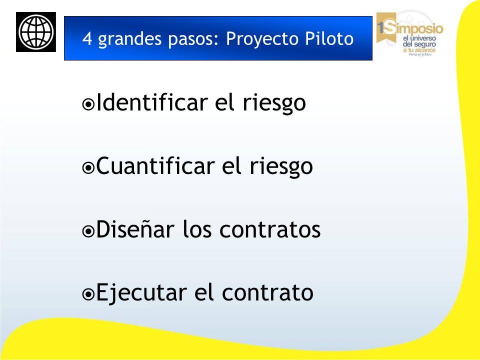4 grandes pasos: Proyecto Piloto Identificar el riesgo Cuantificar el riesgo Diseñar los contratos Ejecutar el contrato