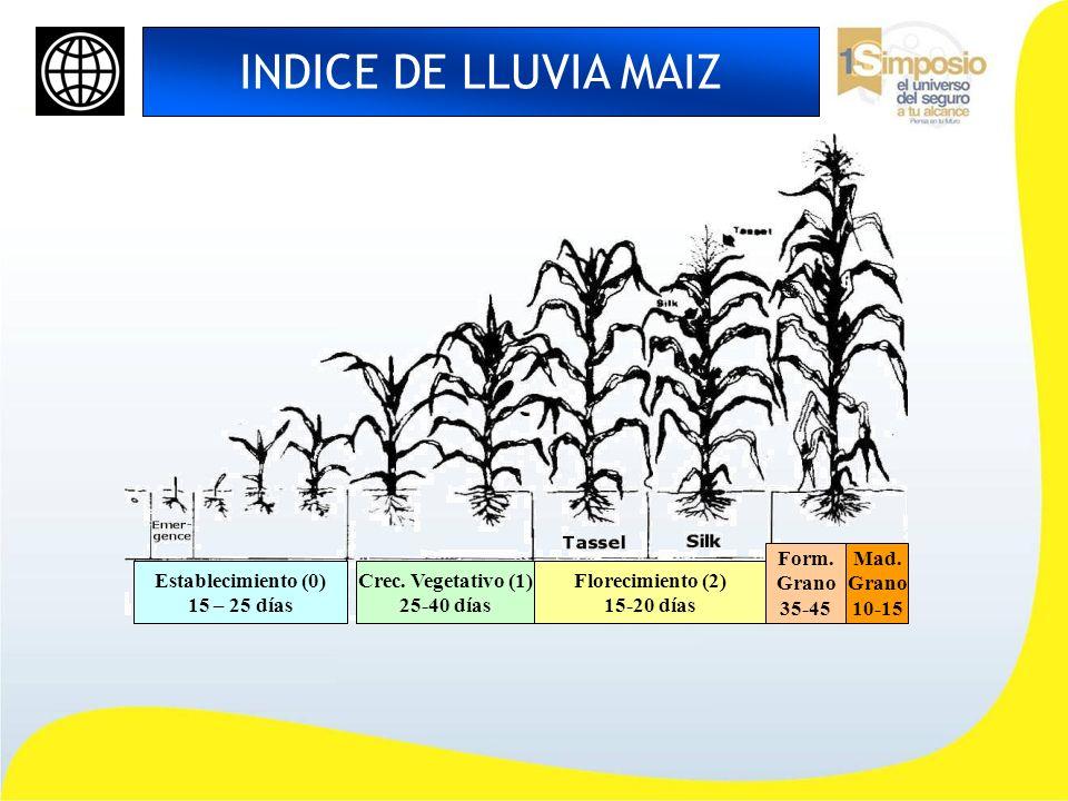 INDICE DE LLUVIA MAIZ Establecimiento (0) 15 – 25 días Crec. Vegetativo (1) 25-40 días Florecimiento (2) 15-20 días Form. Grano 35-45 Mad. Grano 10-15