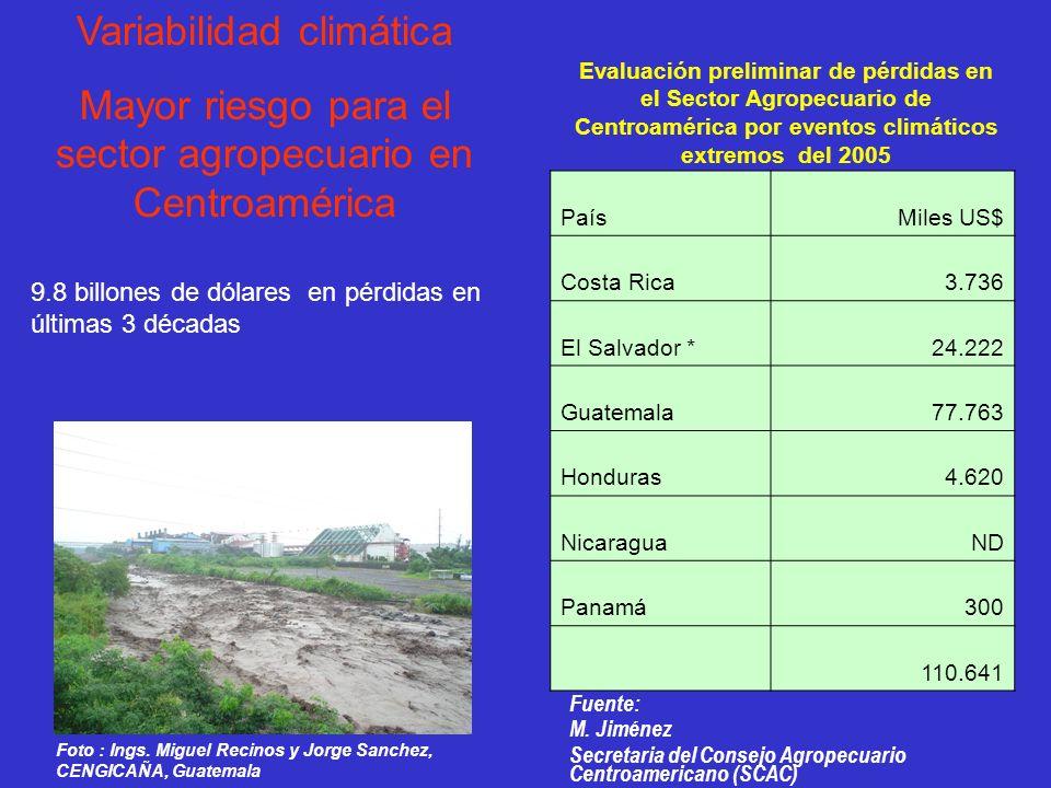 Evaluación preliminar de pérdidas en el Sector Agropecuario de Centroamérica por eventos climáticos extremos del 2005 PaísMiles US$ Costa Rica 3.736 E