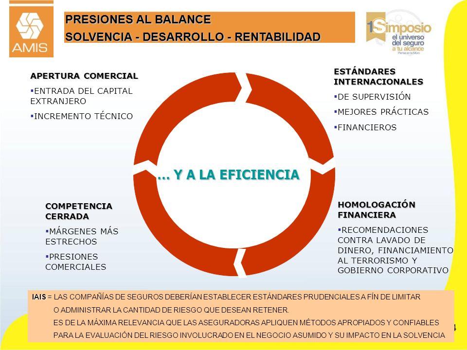 34 PRESIONES AL BALANCE SOLVENCIA - DESARROLLO - RENTABILIDAD APERTURA COMERCIAL ENTRADA DEL CAPITAL EXTRANJERO INCREMENTO TÉCNICO ESTÁNDARES INTERNAC