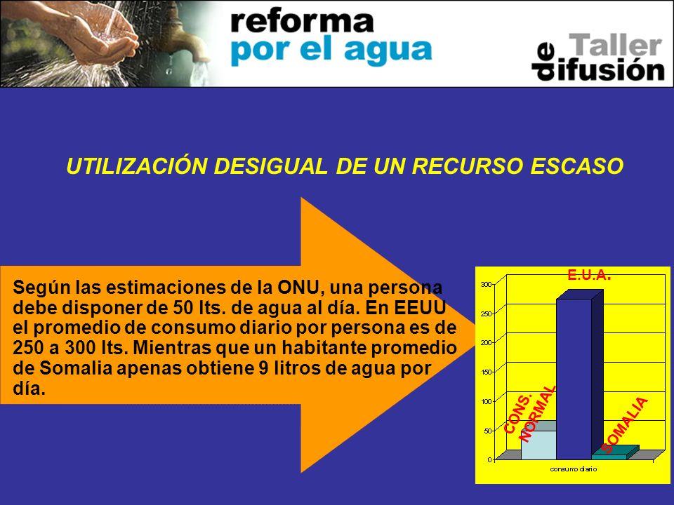 3 UTILIZACIÓN DESIGUAL DE UN RECURSO ESCASO Según las estimaciones de la ONU, una persona debe disponer de 50 lts. de agua al día. En EEUU el promedio