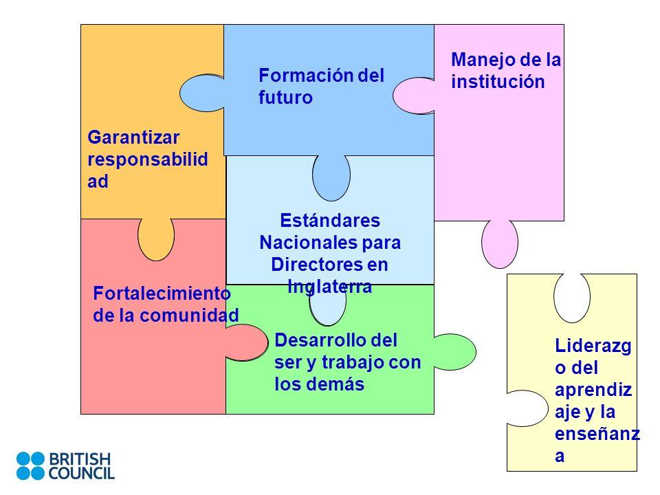 Desarrollo del ser y trabajo con los demás Formación del futuro Manejo de la institución Liderazg o del aprendiz aje y la enseñanz a Estándares Nacion