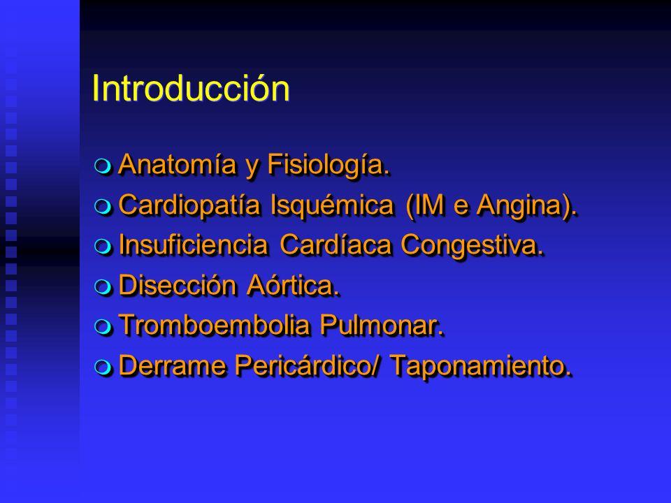 Introducción Anatomía y Fisiología. Anatomía y Fisiología. Cardiopatía Isquémica (IM e Angina). Cardiopatía Isquémica (IM e Angina). Insuficiencia Car
