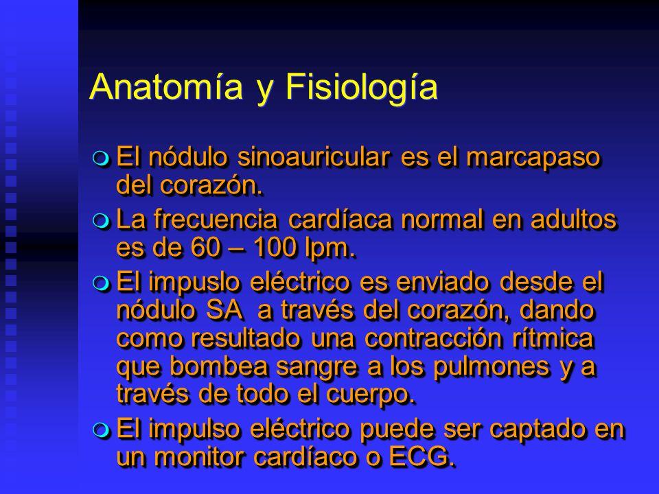 Anatomía y Fisiología El nódulo sinoauricular es el marcapaso del corazón. El nódulo sinoauricular es el marcapaso del corazón. La frecuencia cardíaca