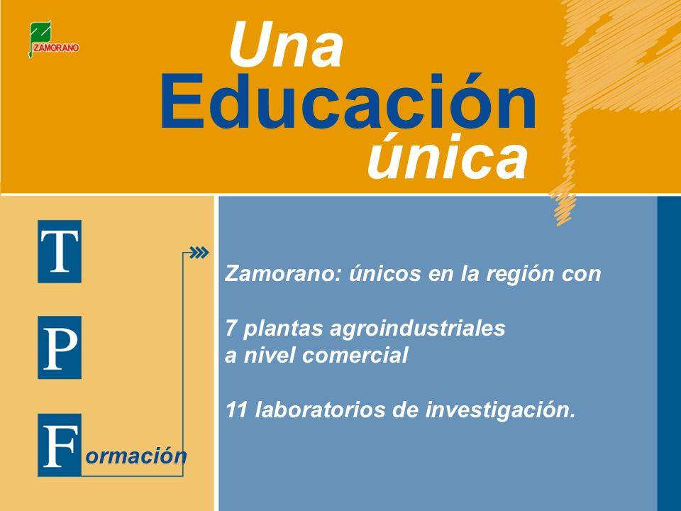 Educación Una única ormación Zamorano: únicos en la región con 7 plantas agroindustriales a nivel comercial 11 laboratorios de investigación.