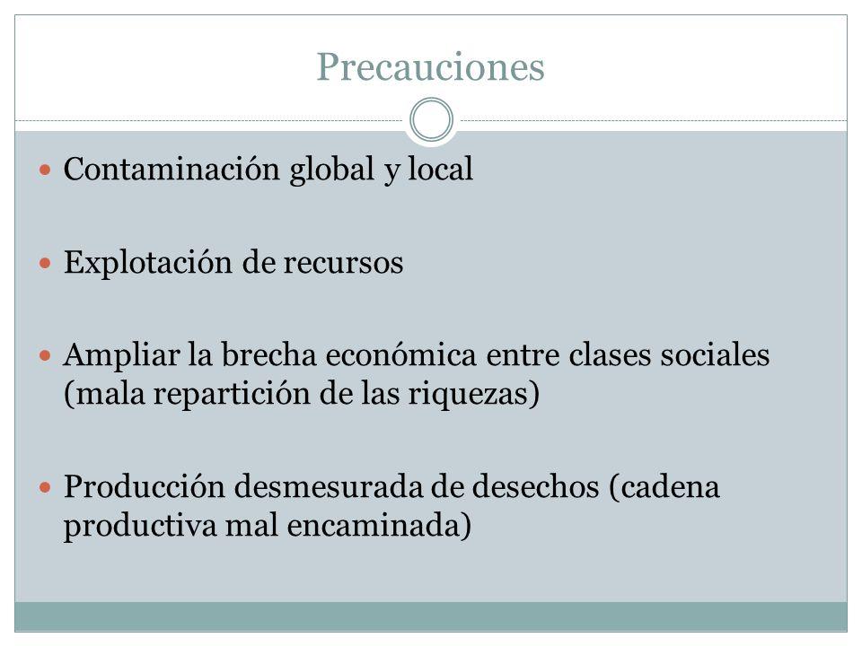Precauciones Contaminación global y local Explotación de recursos Ampliar la brecha económica entre clases sociales (mala repartición de las riquezas)