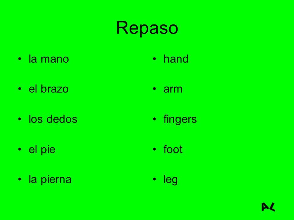 Repaso la mano el brazo los dedos el pie la pierna hand arm fingers foot leg