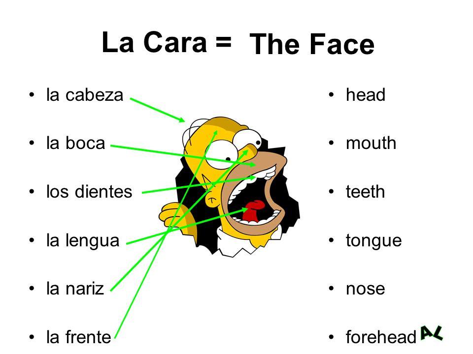 La Cara = la cabeza la boca los dientes la lengua la nariz la frente head mouth teeth tongue nose forehead The Face