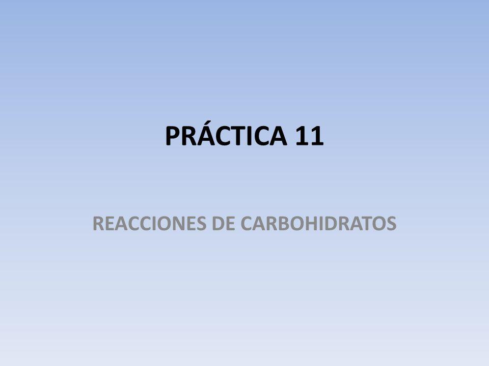PRÁCTICA 11 REACCIONES DE CARBOHIDRATOS