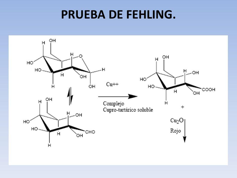 PRUEBA DE FEHLING.