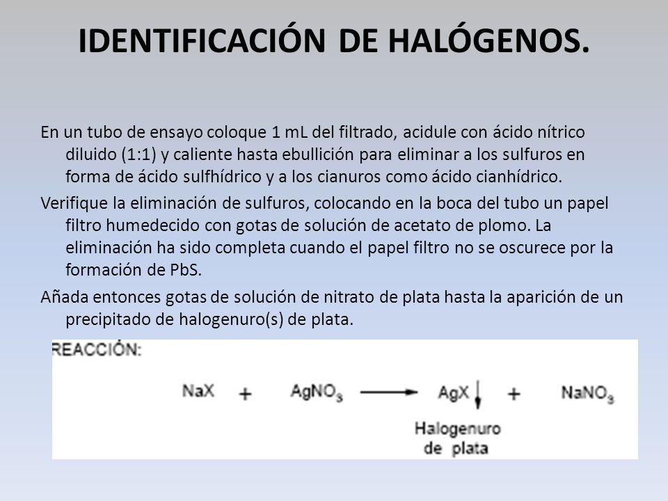 IDENTIFICACIÓN DE HALÓGENOS. En un tubo de ensayo coloque 1 mL del filtrado, acidule con ácido nítrico diluido (1:1) y caliente hasta ebullición para
