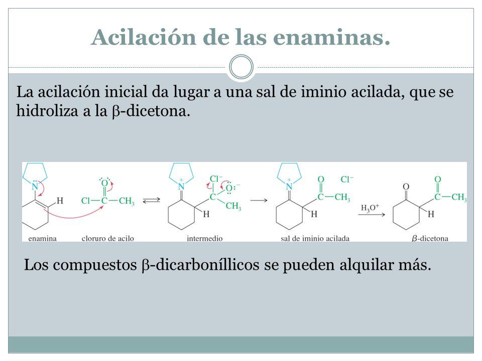 Acilación de las enaminas. La acilación inicial da lugar a una sal de iminio acilada, que se hidroliza a la -dicetona. Los compuestos -dicarboníllicos