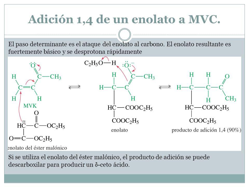 Adición 1,4 de un enolato a MVC. El paso determinante es el ataque del enolato al carbono. El enolato resultante es fuertemente básico y se desprotona