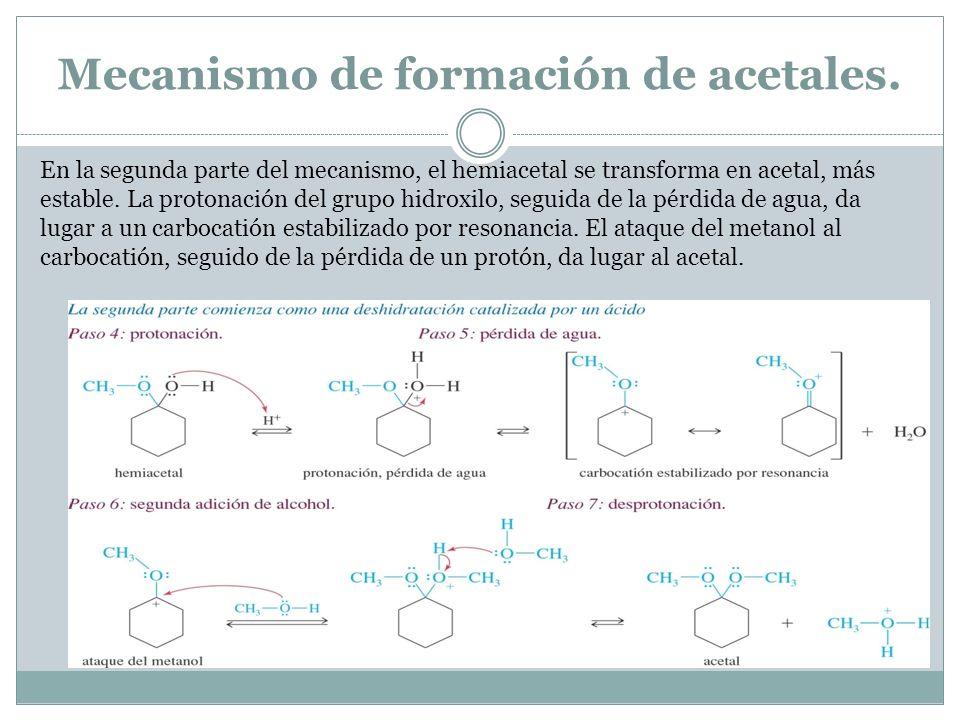 Mecanismo de formación de acetales. En la segunda parte del mecanismo, el hemiacetal se transforma en acetal, más estable. La protonación del grupo hi
