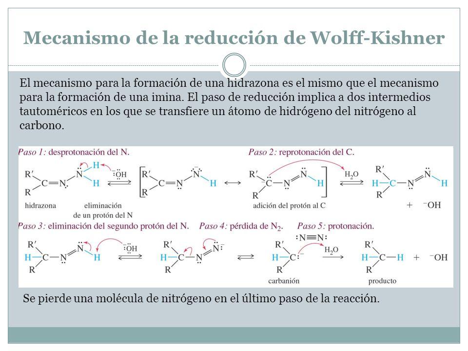 Mecanismo de la reducción de Wolff-Kishner El mecanismo para la formación de una hidrazona es el mismo que el mecanismo para la formación de una imina