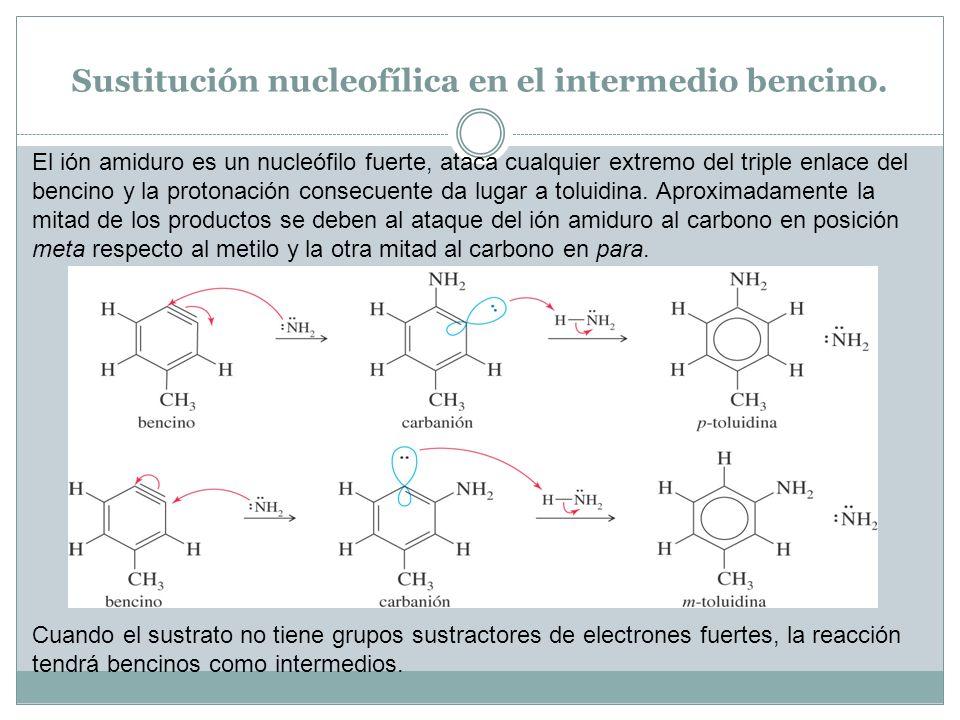 Sustitución nucleofílica en el intermedio bencino. El ión amiduro es un nucleófilo fuerte, ataca cualquier extremo del triple enlace del bencino y la