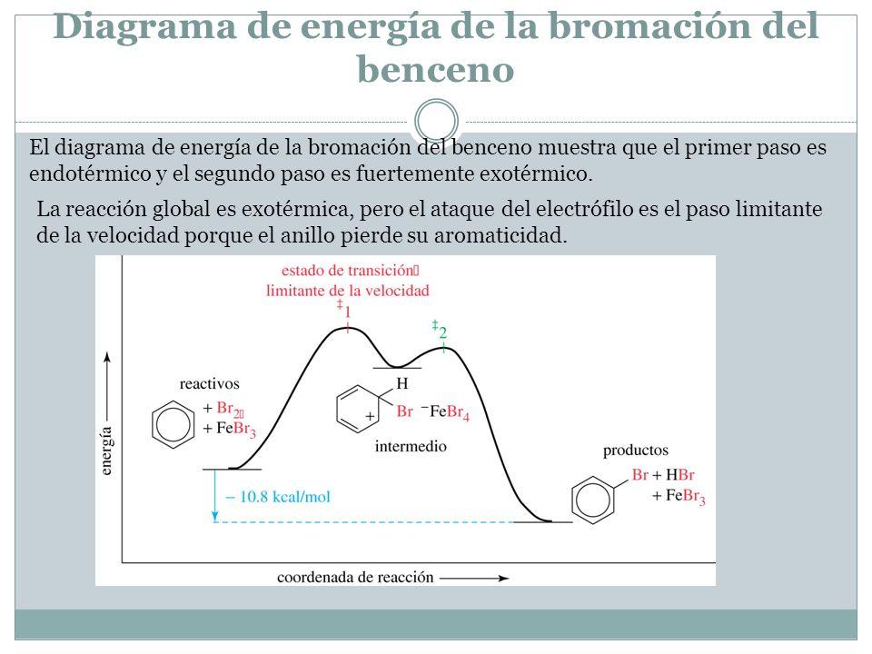 Diagrama de energía de la bromación del benceno El diagrama de energía de la bromación del benceno muestra que el primer paso es endotérmico y el segundo paso es fuertemente exotérmico.