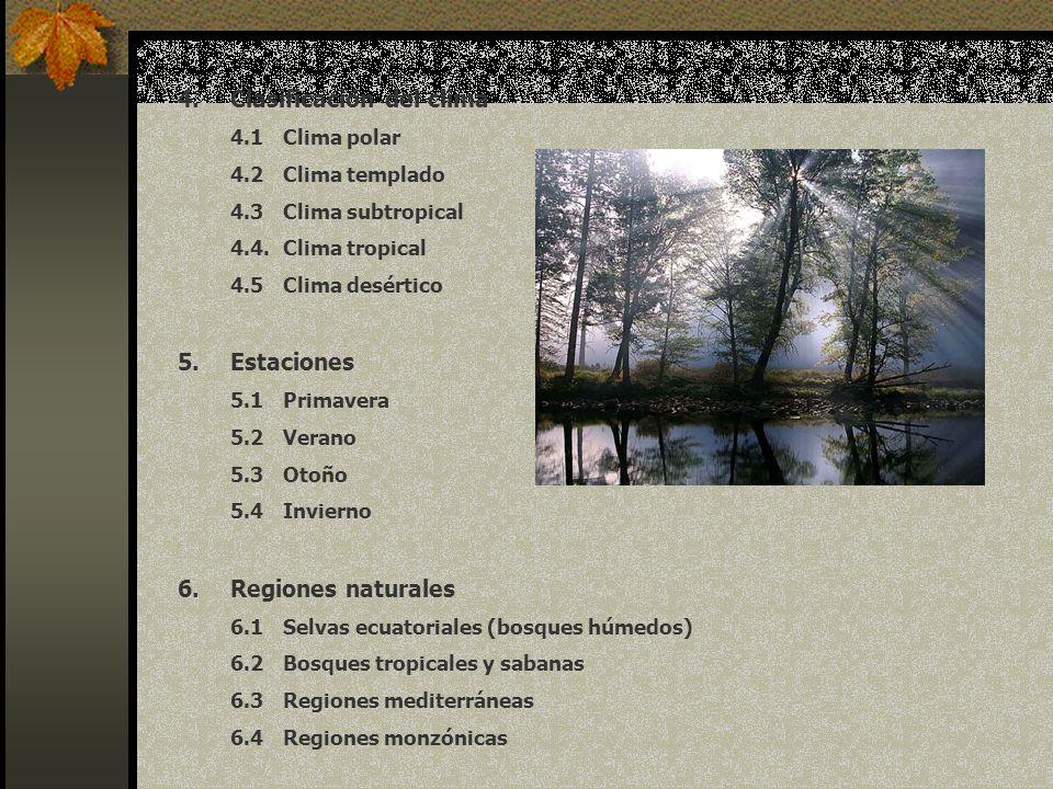 6.5Regiones esteparias 6.6Bosques mixtos de zonas templadas (florestas) 6.7Bosques de clima frío 6.8Tundra 7.Para cada región considerar : 7.1Fauna 7.2Suelo 7.3Vegetación (flora) 7.4Relieves 7.4.1Depresiones 7.4.2Montañas 7.4.3Cordilleras 7.4.4Mesetas 7.4.5Llanuras