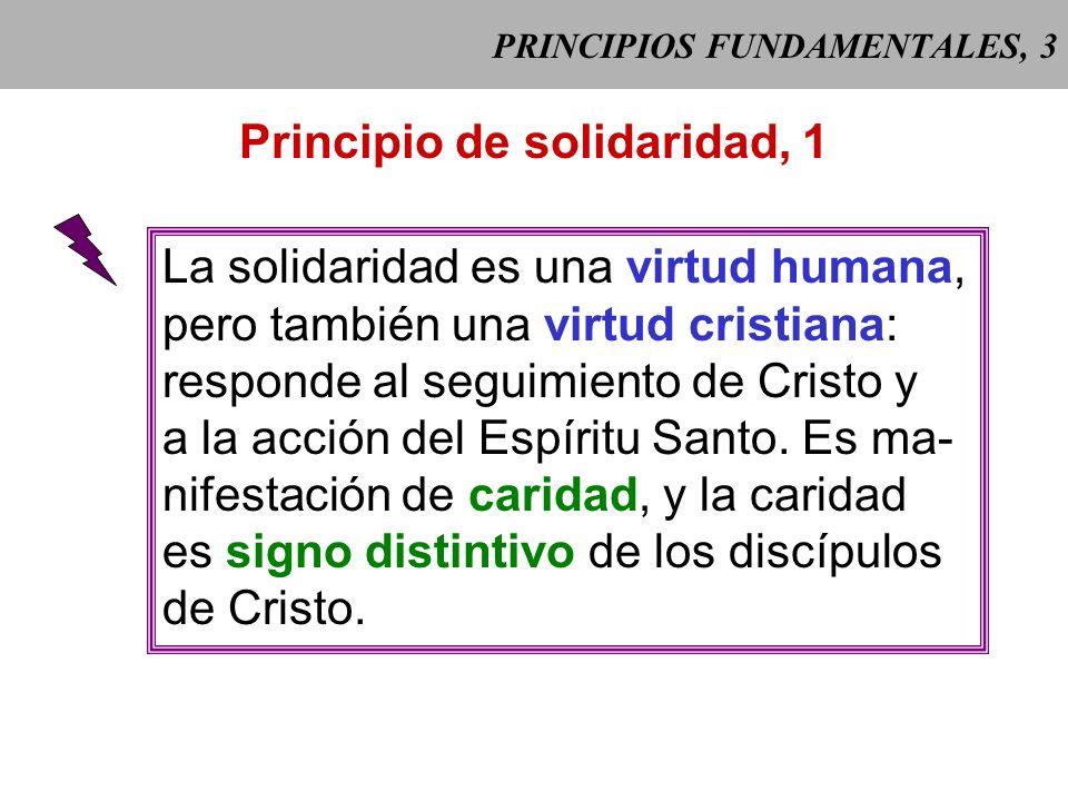 PRINCIPIOS FUNDAMENTALES, 2 Principios de solida- ridad y subsidiari- dad, que indican cómo ha de realizar- se la cooperación en la vida social. Princ