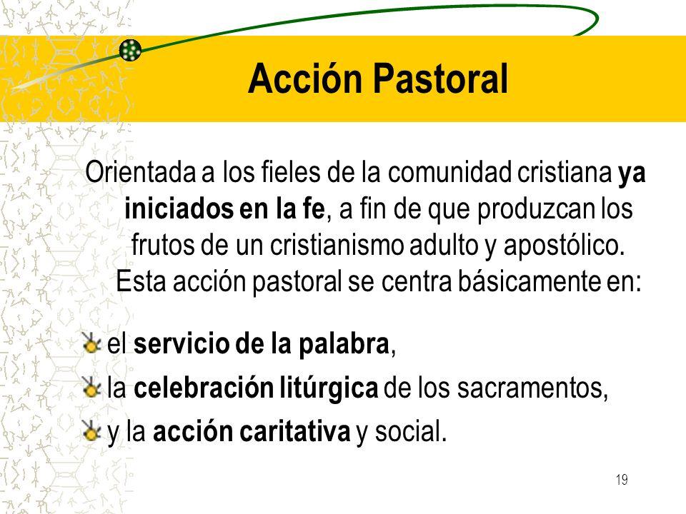 19 Acción Pastoral Orientada a los fieles de la comunidad cristiana ya iniciados en la fe, a fin de que produzcan los frutos de un cristianismo adulto