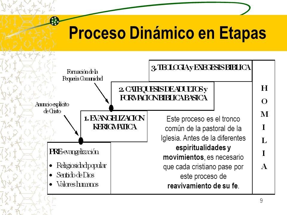 9 Proceso Dinámico en Etapas Este proceso es el tronco común de la pastoral de la Iglesia. Antes de la diferentes espiritualidades y movimientos, es n