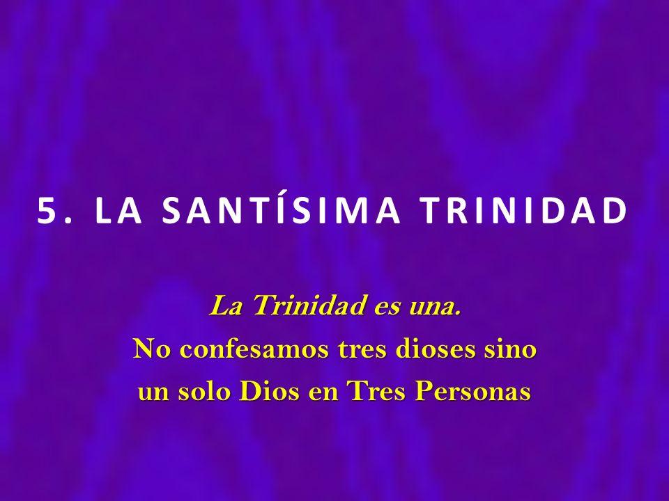 5. LA SANTÍSIMA TRINIDAD La Trinidad es una. No confesamos tres dioses sino un solo Dios en Tres Personas