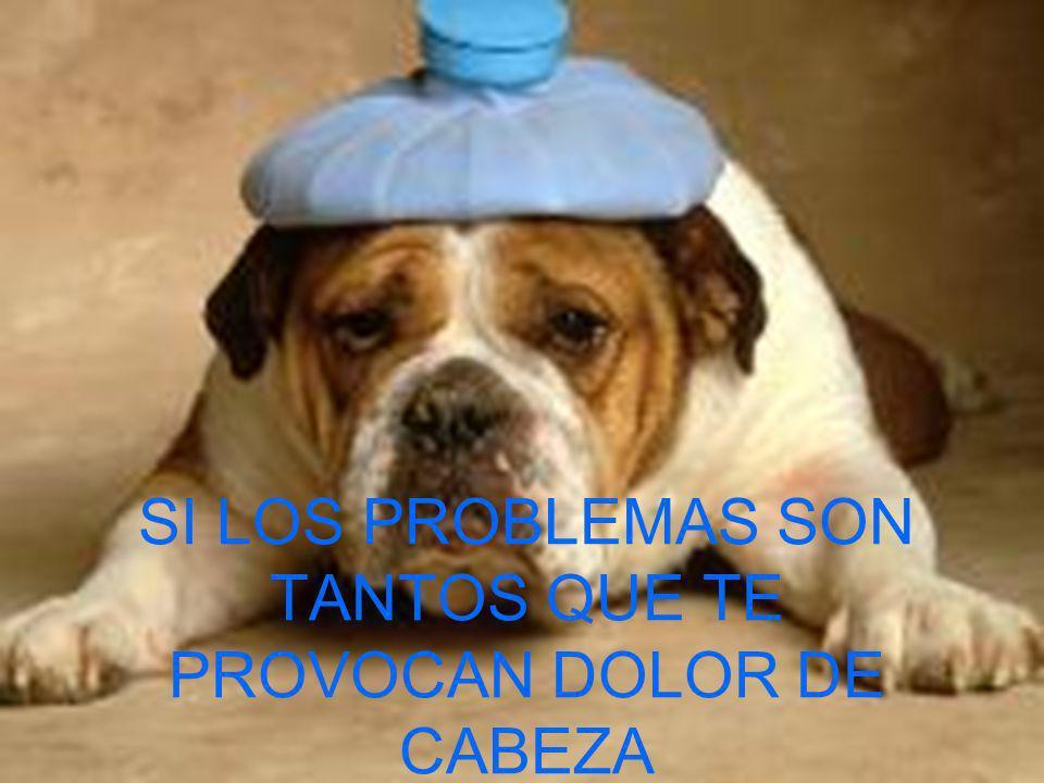 SI LOS PROBLEMAS SON TANTOS QUE TE PROVOCAN DOLOR DE CABEZA