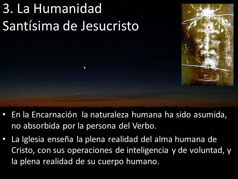 La naturaleza humana de Cristo pertenece propiamente a la persona divina del Hijo de Dios que la ha asumido.