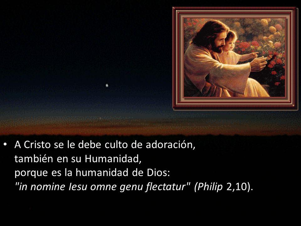 En Cristo se manifiesta y revela la Divinidad a través de su Humanidad.