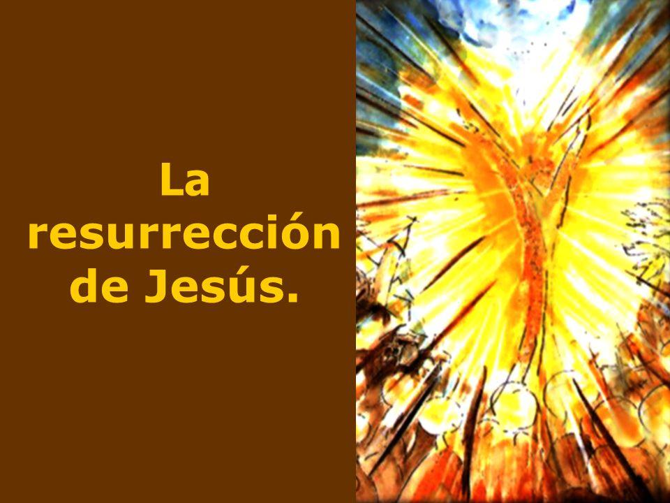 Lo que atestiguan los apóstoles es, esencialmente, esto: aquel que murió crucificado, está ahora vivo.