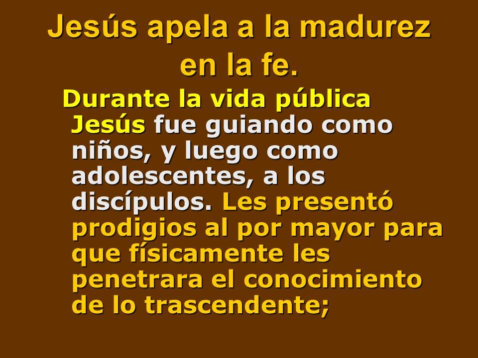 Jesús apela a la madurez en la fe. Durante la vida pública Jesús fue guiando como niños, y luego como adolescentes, a los discípulos. Les presentó pro