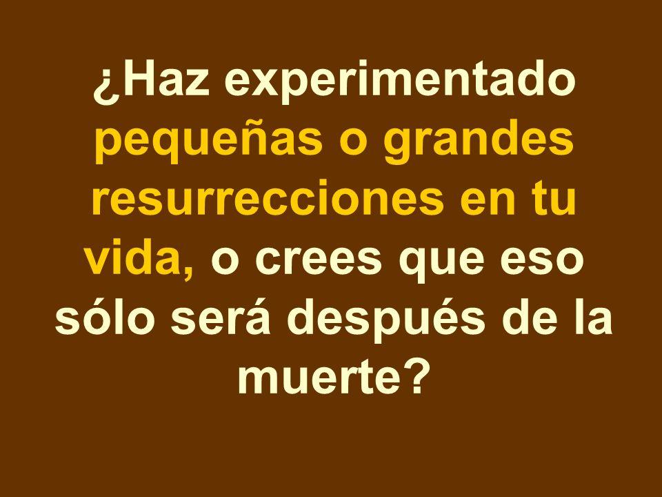 ¿Haz experimentado pequeñas o grandes resurrecciones en tu vida, o crees que eso sólo será después de la muerte?
