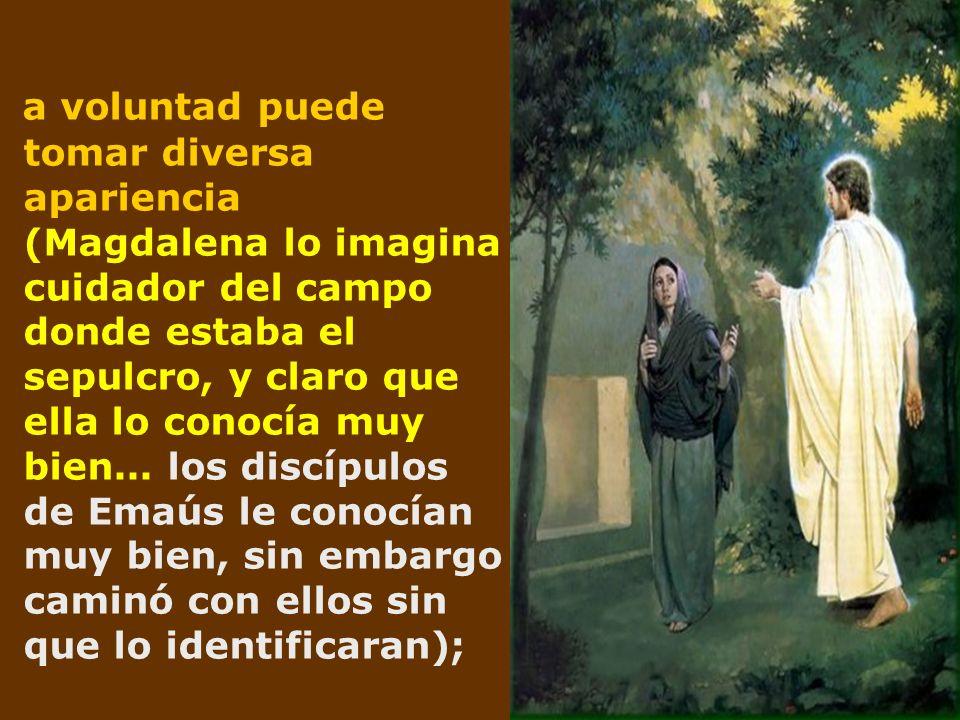 a voluntad puede tomar diversa apariencia (Magdalena lo imagina cuidador del campo donde estaba el sepulcro, y claro que ella lo conocía muy bien... l