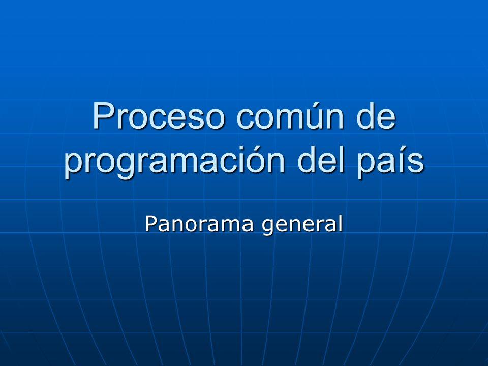 Proceso común de programación del país ECP Acordar los desafíos fundamentales del desarrollo