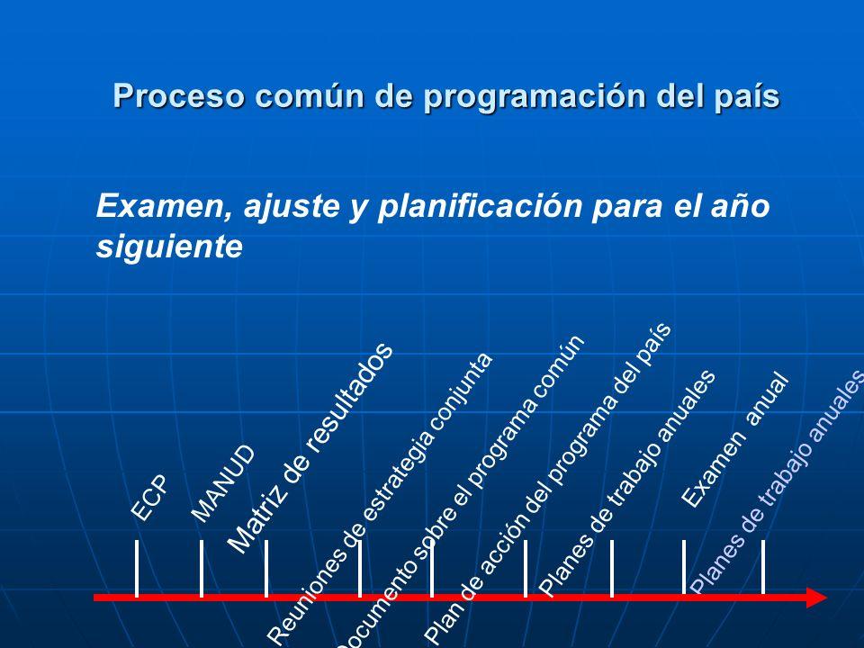 Examen anual Planes de trabajo anuales ECP Planes de trabajo anualesMANUD Matriz de resultados Reuniones de estrategia conjuntaDocumento sobre el programa común Plan de acción del programa del país Examen, ajuste y planificación para el año siguiente Proceso común de programación del país